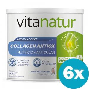 Pack 6 unidades de Vitanatur Collagen Antiox Plus 180gr